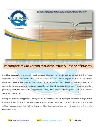 Specialist in Gas Chromatography