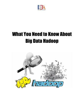 What You Need to Know About Big Data Hadoop