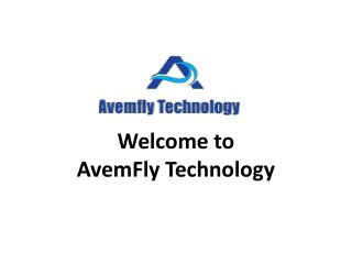 SEO Company Delhi | Top Most SEO Company in Delhi - Avemflytechnology