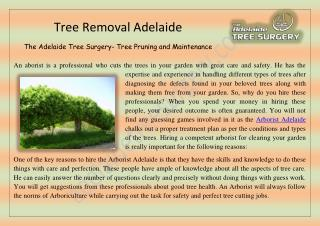 Tree Removal Adelaide �