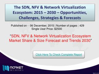 Strategic Analysis on SDN, NFV & Network Virtualization Ecosystem Market 2030
