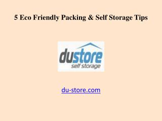5 Eco Friendly Packing & Dubai Self Storage Tips