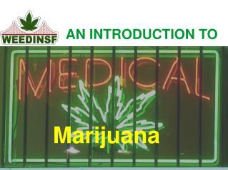 Medical Marijuana San Francisco