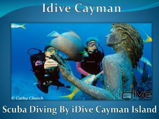 Idive Cayman Snorkeling