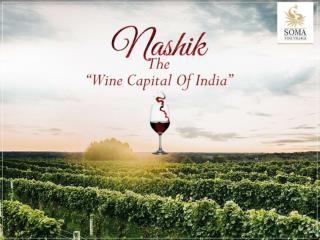Best Vineyards & Resorts in Nashik