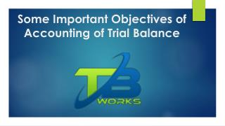 Some Important Objectives of Accounting of Trial Balance