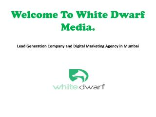 Lead Generation Company and Digital Marketing Agency in Mumbai - White Dwarf Media