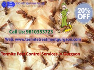 Get 20% Off On Termite Pest Control Services In Gurgaon