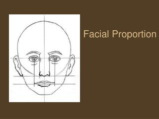 Facial Proportion