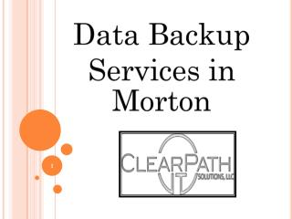 Data Backup Services Morton