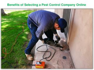 """Benefits of Selecting a Pest Control Company Online  """