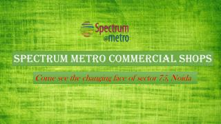 Best Commercial Spaces in Noida at Spectrum Metro