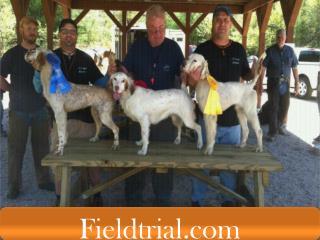 Horseback Field Trials