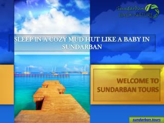 Sundarban Tour, Affordable Sundarban Tour Package