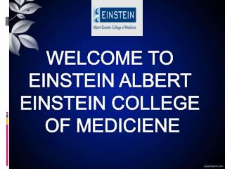 Master Bioethics at Bronx