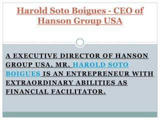 Harold Soto Boigues - CEO of Hanson Group USA