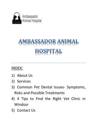 Get Professional vet services in Ambassador Animal Hospital Windsor