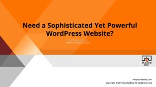 Need a Sophisticated Yet Powerful WordPress Website?