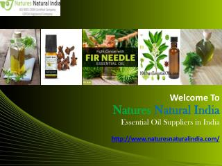 Pure Organic Natural Essential Oil Suppliers in India