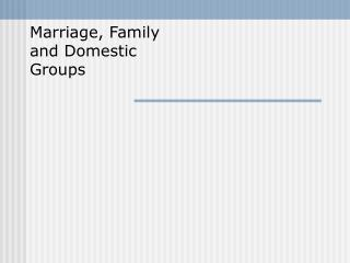 Marriage, Family and Domestic Groups