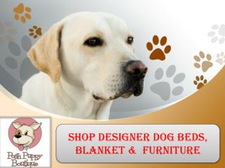 Shop designer dog beds, blanket & furniture