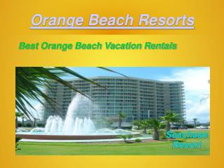 Amazing Orange Beach Vacation Rentals