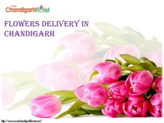Flowers Delivery in Chandigarh