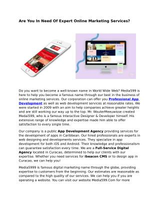 Web Designer Agency Caribbean