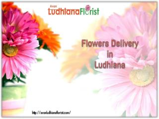 Flowers Delivery in Ludhiana