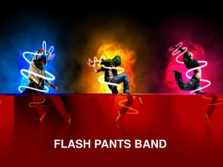 Book Now Amazing FlashPants 80s Band