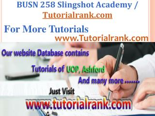 BUSN 258 Slingshot Academy / Tutorialrank.Com