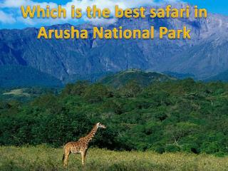 Which is the best safari in Arusha National Park