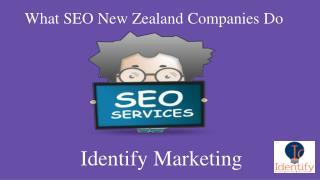 SEO Services NZ