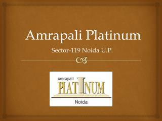 Amrapali Platinum Sector 119 Noida � Investors Clinic