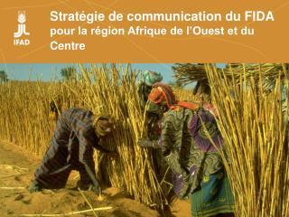 Strat gie de communication du FIDA pour la r gion Afrique de l Ouest et du Centre