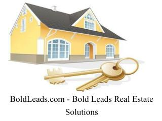 Bold Leads - Best Real Estate Lead Generation Services