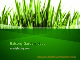 Tips for Balcony Garden and Terrace Garden