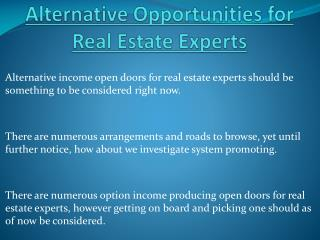 Alternative Opportunities for Real Estate Experts