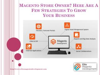 Magento Store Owner? Here Are A Few Strategies To Grow Your Business