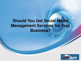 Should You Get Social Media Management Services for Your Business