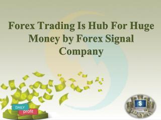 Forex Trading | Forex Signal Company | Sapforex24 | ComexSignal