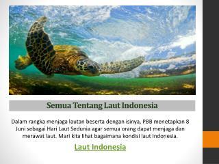 Semua Tentang Laut Indonesia