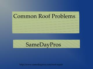Common Roof Problems