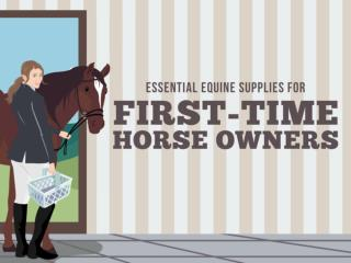 Essential Equine Supplies for First-Time Home Owners
