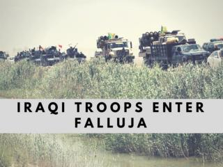 Iraqi troops enter Falluja