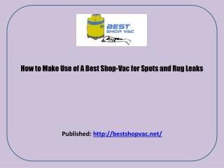 Shop Vac Reviews
