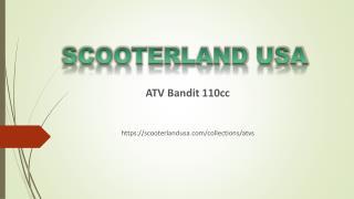 Scooterland USA - Buy ATV Bandit 110cc