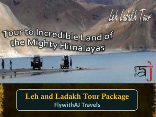 Tour to Incredible Land of the Mighty Himalayas with Flywith AJ