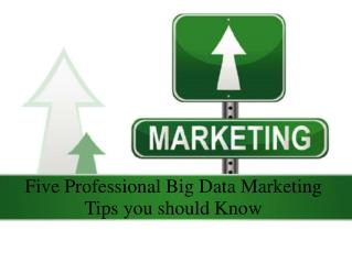 Five Professional Big Data Marketing Tips you should Know