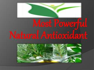 Most Powerful Natural Antioxidant